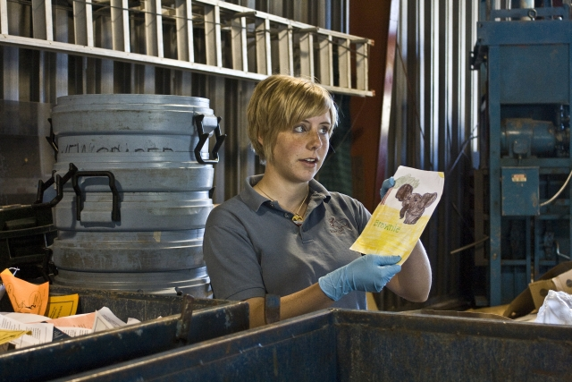 Amy Kozlowski Finds Artwork While Sorting Through Recycling