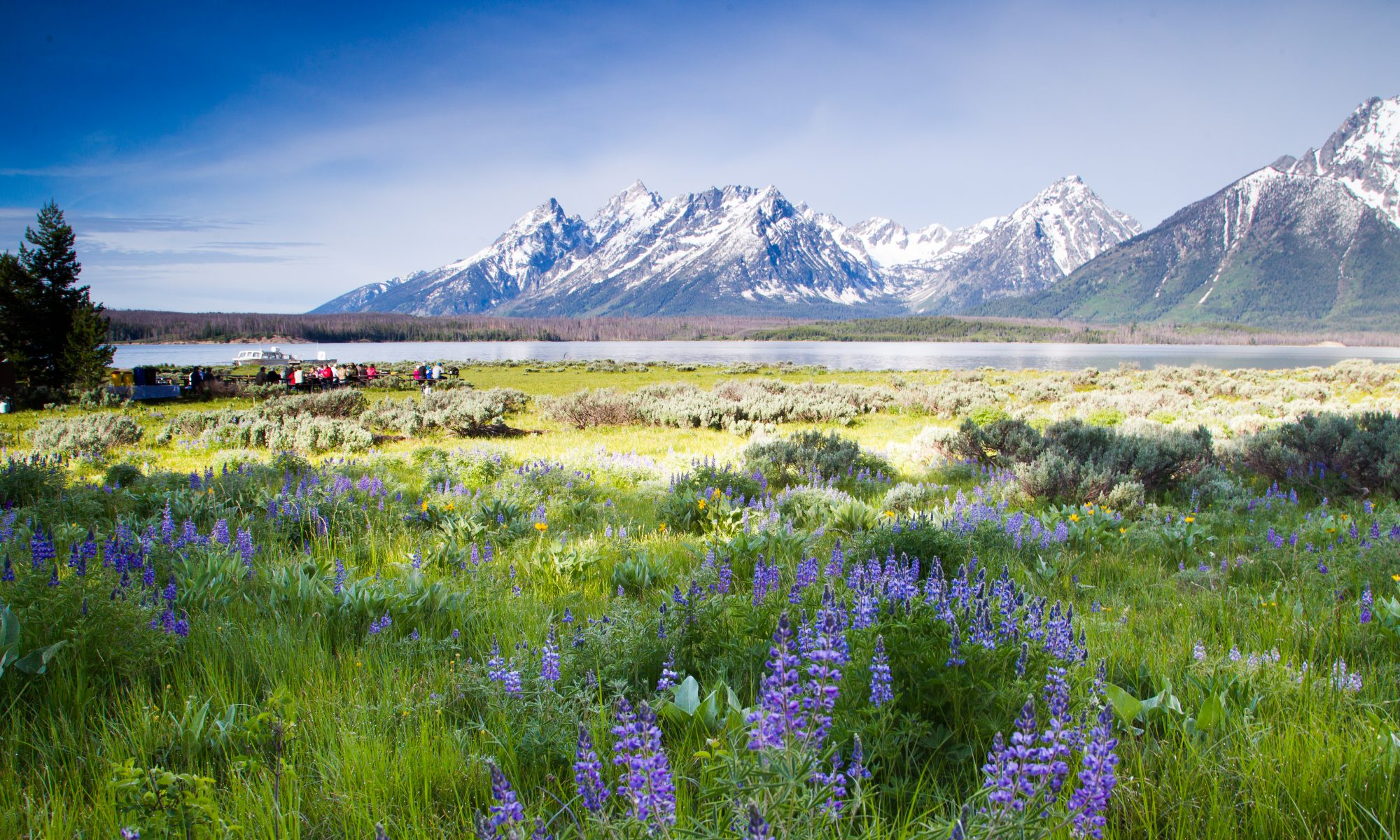 Tales from the Tetons